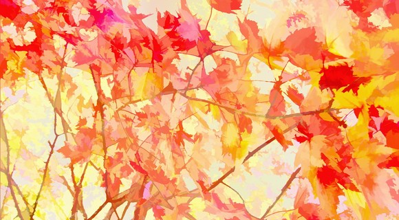 Archive thumb monotype art pattern leaves colored autumn hd wallpaper