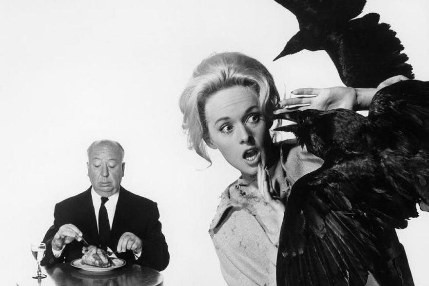 a biography and life work of alfred hitchcock a british movie director 9 things you may not know about alfred hitchcock on his movie sets and in his private life for his work, yet the academy award for best director.